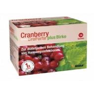 Cranberry UroForte +  breza, vrečke
