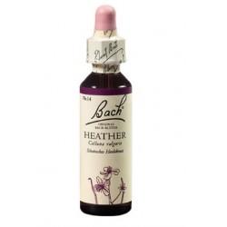 Bach kapljice št.14 - Heather