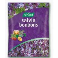 A.Vogel, Salvia bonboni