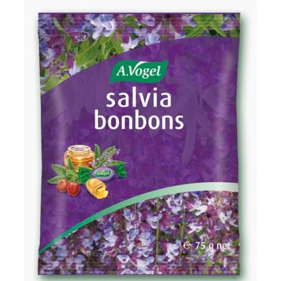A.Vogel, Salvia bonboni Prehrana in dopolnila