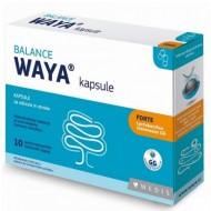 Waya Balance forte, probiotične kapsule za odrasle in otroke - 10 kapsul