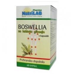 Nutrilab Boswellia, kapsule